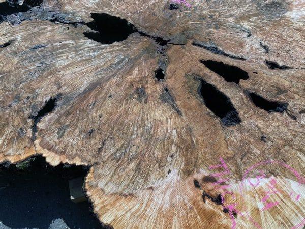 big-leaf-maple-burl-slab