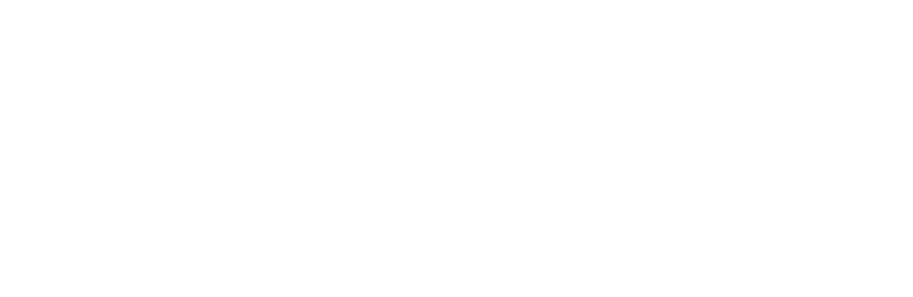 STEELPORT Knife logo